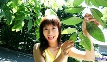 Ayumu Kase - Picture 11