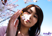 Maiko - Picture 7