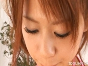 Chizuru Morill Naughty Asian babe Sucks Cock And Gets A Face full Of Cum